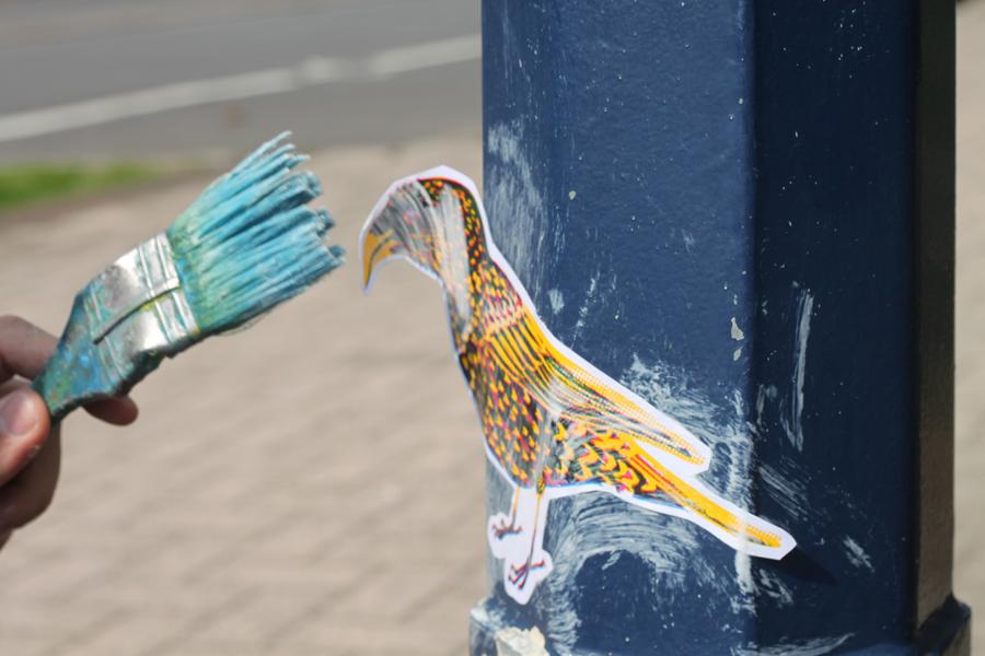 oiseaux-barbara-govin7