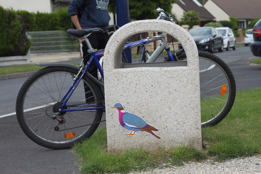 oiseaux-barbara-govin9