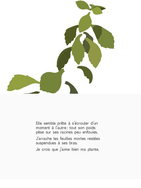 plante-pisse-au-vent-barbara-govin5