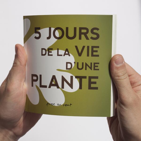 plante_2