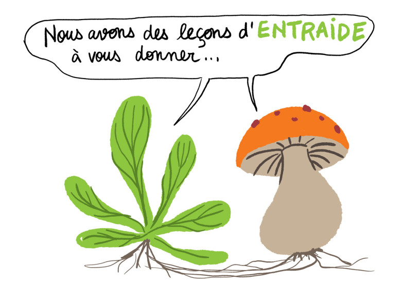 conference-dessinee-fbouteau-fontenay-2020-12
